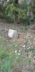 steen bij de Höfte